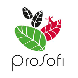 Prosofi